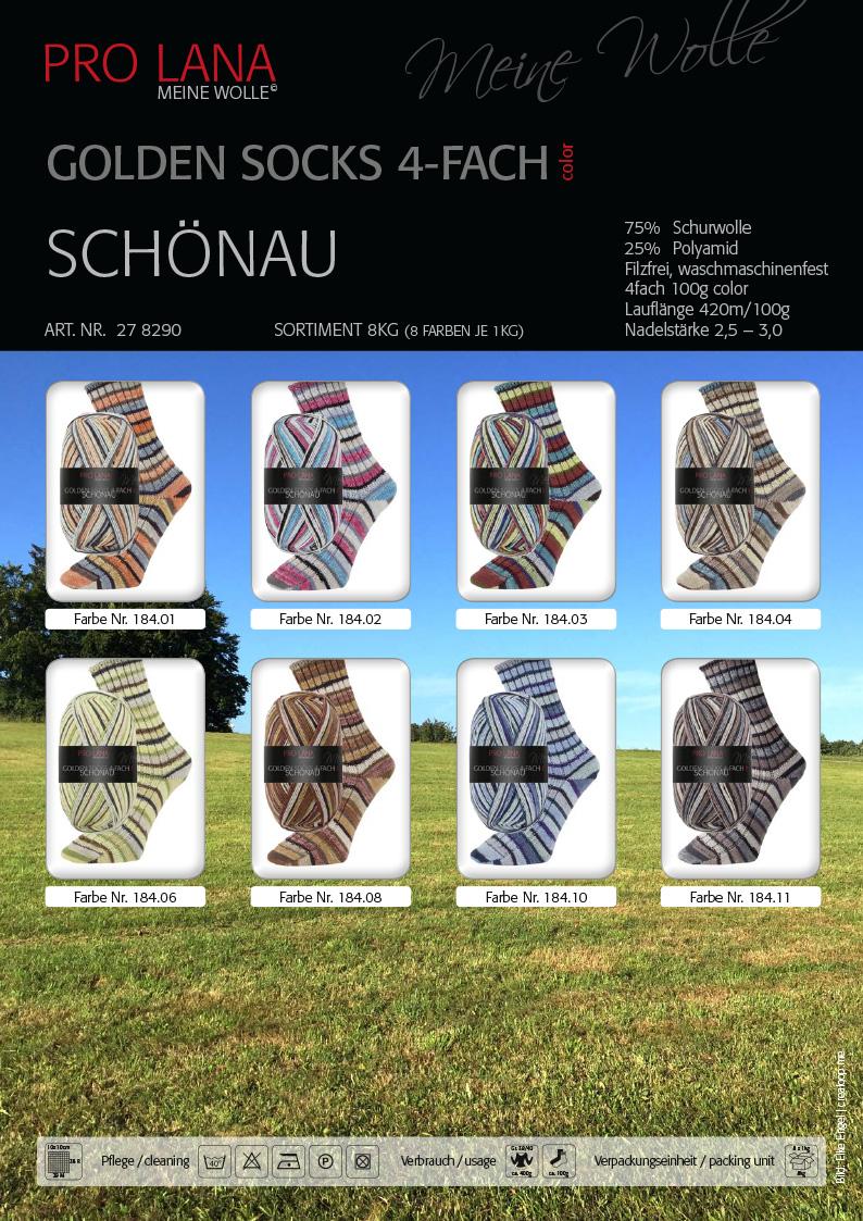 Schoenau_Golden Socks_04022017_intente