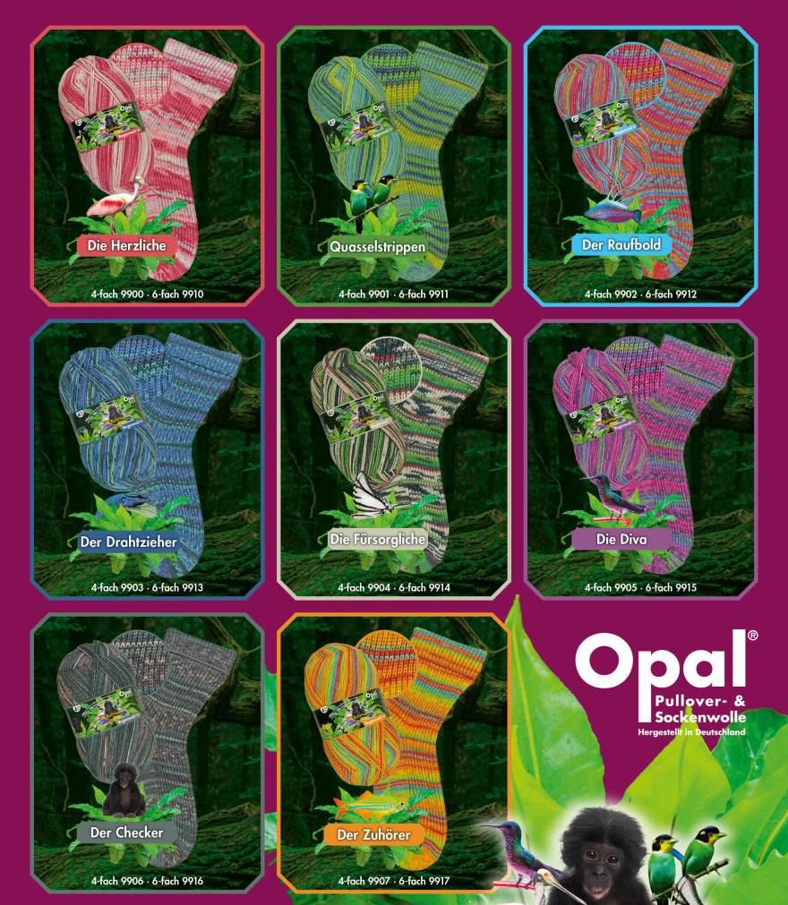 Opal_Regenwald16_2020